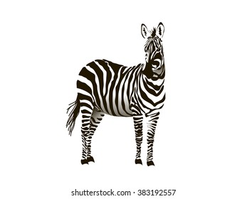 zebra striped