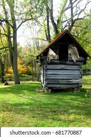 Zebulon Vance Birthplace State Historic Site