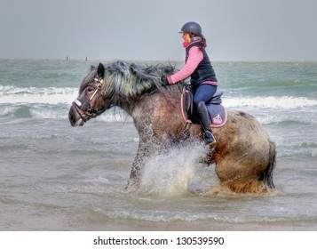 """ZEELAND,NETHERLANDS - FEB. 23: A man on a horse participates in the annual event """"strao""""; a historic celebration where horses feet are washed in the sea on February 23, 2013 in Zeeland, Netherlands."""