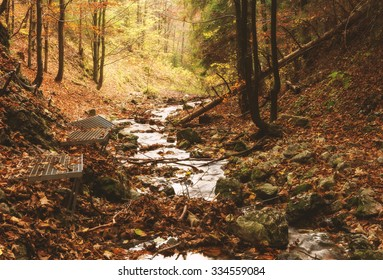 Zejmarska roklina - mysterious forest with stream, Narodny park Slovensky Raj (National park Slovak paradise), Slovakia, Eastern Europe - Shutterstock ID 334559084
