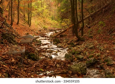 Zejmarska roklina - mystery forest with stream, Narodny park Slovensky Raj (National park Slovak paradise), Slovakia, Eastern Europe  - Shutterstock ID 334559105