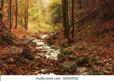 Zejmarska roklina - mystical forest with stream, Narodny park Slovensky Raj (National park Slovak paradise), Slovakia, Eastern Europe - Shutterstock ID 334559102