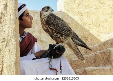 Zekreet - Qatar / December 2010: Young boy in traditional dress with his pet falcon, classic relation between some Arab and the falcons as they use it on hunting and show