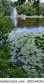 Zelenogradsk, Kaliningrad region, Russia - August 1 2021: Lake in the central park of town