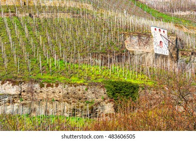 Zeltinger sundial in the wine-growing town on the Mosel in ZeltingenGermany referred a German vineyard.