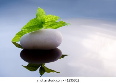 zen background, grass, mint, melissa