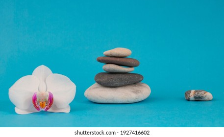 Zen balance pebbles with orchids. Concept of spa and health care, peace and quiet. On a blue background.