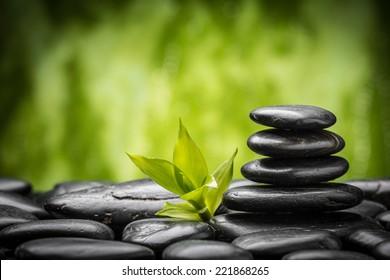Piedras basálticas zen y bambú