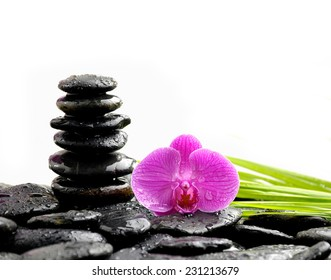 zen basalt stones and orchid with green leaf on dew