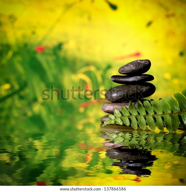 Zen Dark Stones Leafs Fern On Stock Photo Edit Now 137866586