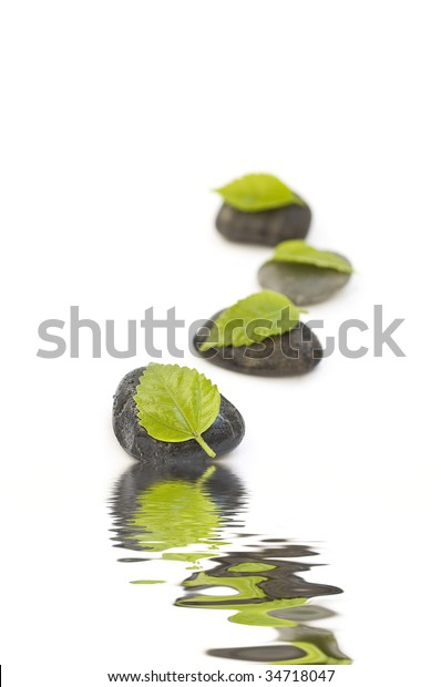 Zen Like Spa Green Leafs Healthcare Medical Stock Image 34718047