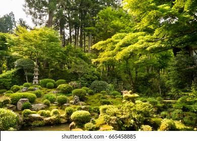 Zen Moss garden Sanzenin Temple in Ohara rural of Kyoto , Japan