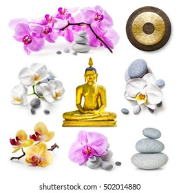 Zen spa background.Golden buddha statue, zen stones, gong, pink and white orchid flowers collection isolated on white background