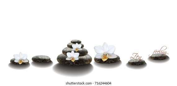 Zen spa orchids on rocks, realistic illustration. Spa or beauty