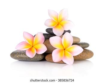 zen stones with frangipani flower on white background