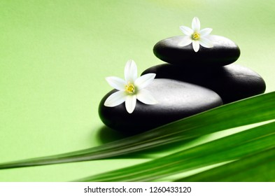 Zen stones with palm leaves and white flower. Spa concept