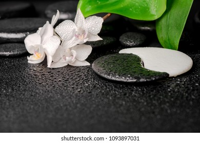 zen and Yin-Yang stones with drops, white orchid (phalaenopsis) and green leaf, spa concept