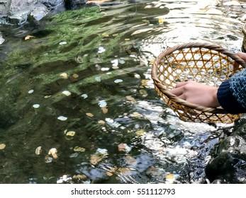 Zeniarai (money washed)
