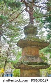 Zenkoji Temple Japan Sakura Cherry Blossom in Nagano