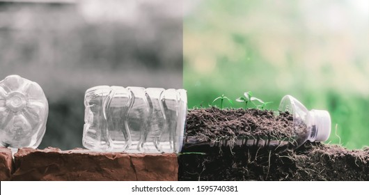 Zero waste Change waste plastic bottle that are thrown into the earth to reduce resources by reuse to save the world.Eco green sustainable living concept, plastic free, zero waste concept. recycling