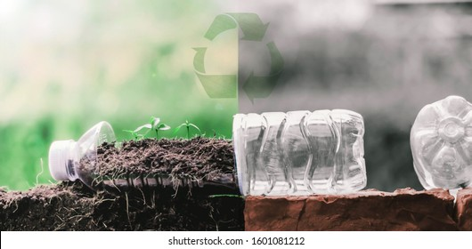 Zero waste Change waste plastic bottles that are thrown into the earth to reduce resources by reuse to save the world.Eco green sustainable living concept, plastic free, zero waste concept. recycling