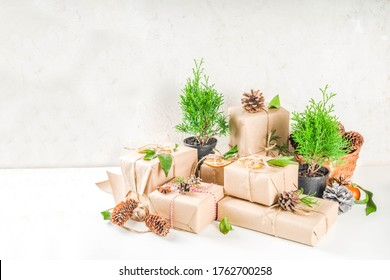 Zero waste christmas concept. Stack of handmade christmas gift boxes in craft paper with  different organic decoration and little live xmas tree in flowerpots.