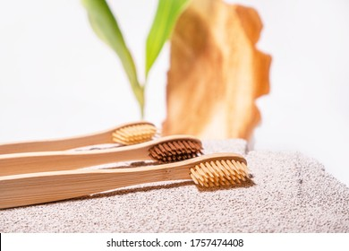 Zero waste toothbrushes on eco natural background with cement, green leaf and cross section of the tree. Bamboo or wooden toothbrush. Dental backgound. Morning routine