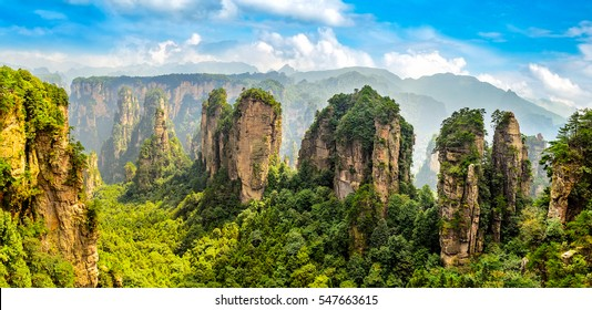 Zhangjiajie Forest Park. Gigantic pillar mountains rising from the canyon. Hunan province, China.