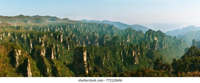 Zhangjiajie Forest Park. Gigantic pillar mountains rising from the canyon. Hunan province, China