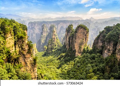 Zhangjiajie Forest Park. mountain columns spread along huge canyon covered with forest illuminated with light. Hunan province, China.