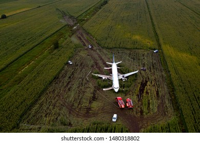 ZHUKOVSKY, MOSCOW REGION, RUSSIA - August 16, 2019: Airbus A321 VQ-BOZ of Ural airlines laying in corn field after birdstrike and crash landing with no fatalities on departure from Ramenskoe airport.