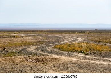 zigzag path of wilderness, dirt road on gobi, way through the desolate land