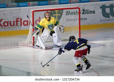 ZILINA, SLOVAKIA - FEBRUARY 16, 2019: Young goalie of Slovak ice hockey team MSHKM Zilina, Matyas Vesely, during match against MSK Puchov