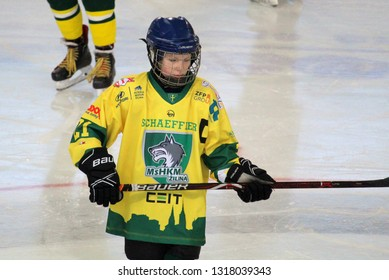 ZILINA, SLOVAKIA - FEBRUARY 16, 2019:   Portrait of young hockey player of MSHKM Zilina Kristian Macak during league match against  MSK Puchov. MSHKM Zilina won this game 15-0.