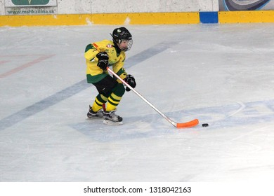 ZILINA, SLOVAKIA - FEBRUARY 16, 2019: Young hockey player of MSHKM Zilina Lukas Urdak on the puck during league match against  MSK Puchov. MSHKM Zilina won this game 15-0.