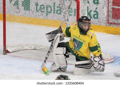 ZILINA, SLOVAKIA - MARCH 6, 2019: Portrait of young goalkeeper of junior Slovak ice hockey team MSHKM Zilina during league match against HK Brezno. MSHKM Zilina won this match 8:2.