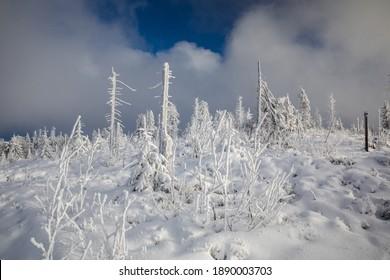 Piękna zima w górach Gorcach- świeży śnieg utworzył niesamowity krajobraz. Beskidy, Polska. - Shutterstock ID 1890003703