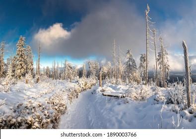 Piękna zima w górach Gorcach- świeży śnieg utworzył niesamowity krajobraz. Beskidy, Polska. - Shutterstock ID 1890003766