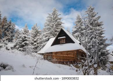 Piękna zima w górach Gorcach- świeży śnieg utworzył niesamowity krajobraz. Beskidy, Polska. - Shutterstock ID 1890003832