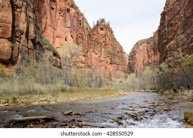 Zion Canyon; view northwards up the Virgin River into the canyon, with walkers on riverside track in soft afternoon light.