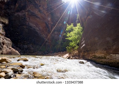 Zion the narrows
