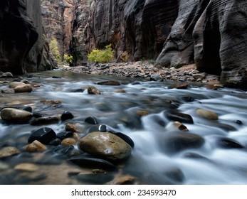 Zion Narrows Flow