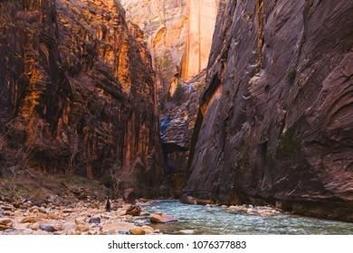 Zion Narrows River