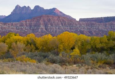 Zion National Park  autumn at twilight