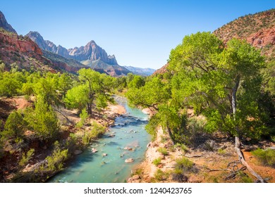 Zion National Park scenery with famous Virgin river and The Watchman mountain peak in the background on a beautiful sunny day with blue sky in summer, Utah, USA