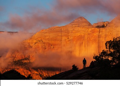 Zion  National Park at sunrise. Utah, Usa