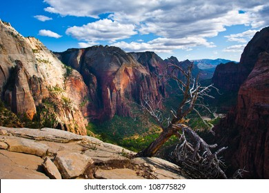 ZIon National Park,Utah