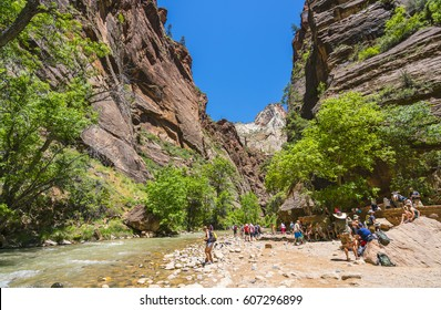 Zion National park,Utah,usa.06/02/16: zion narrow in Zion National park,Utah,usa.
