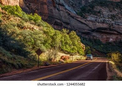 ZION NATIPONAL PRAK, UTAH, USA. 11-03-2014.  Only during the winter month private vehicles are allowed on Zion Canyon Scenic Drive