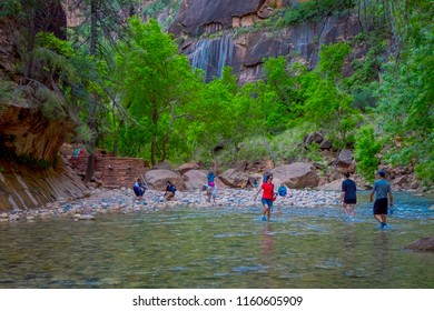 ZION, UTAH, USA - JUNE 14, 2018: Outdoor view of unidentified people hiking in zion narrow with virgin river in summer season, in Zion National park, Utah